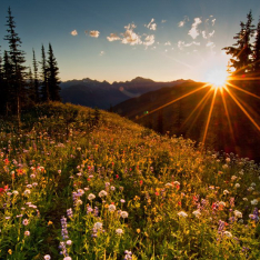 Hiking Idaho Peak